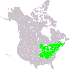 a map displaying the sugar maple forests of north america